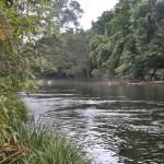 Elopement venue near Port Douglas